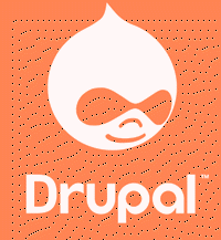 best drupal developer