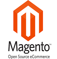 best Magento developer